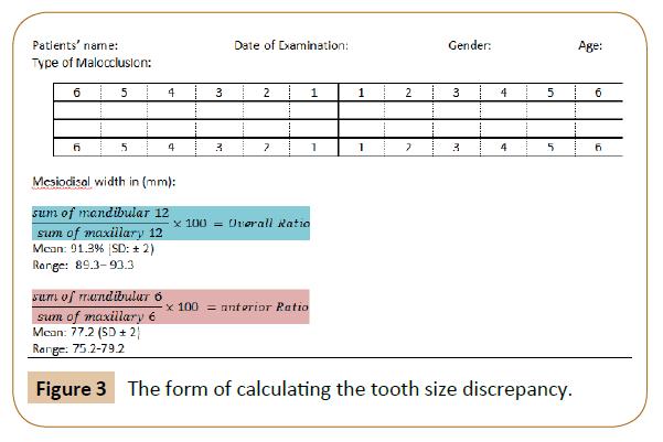 orthodontics-endodontics-tooth-size